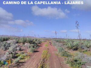 Camino de la Capellania a Lajares