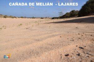 Cañada de Melián_Lajares