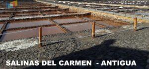LAS SALINAS DEL CARMEN -1