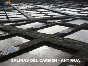 Las Salinas del Carmen 2