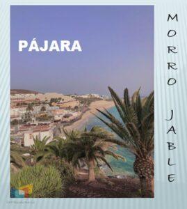 MORRO JABLEB 01