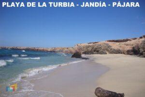 Playa de la Turbia_Jandía PAJARA
