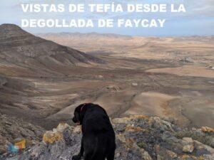 Vistas de Tefía desde la degollada de Facay 4