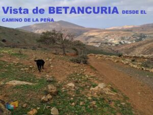 vVISTA DE BETANCURIA desde camino Peña